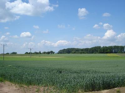 Landwirtschaftliche Erzeugnisse aus Dreieich